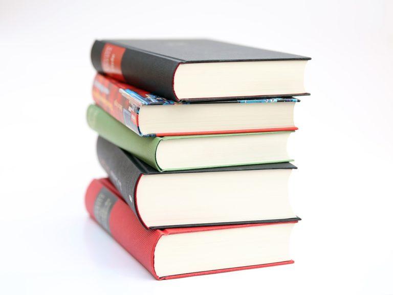 Les 5 meilleurs livres sur Carene Ponte en 2021